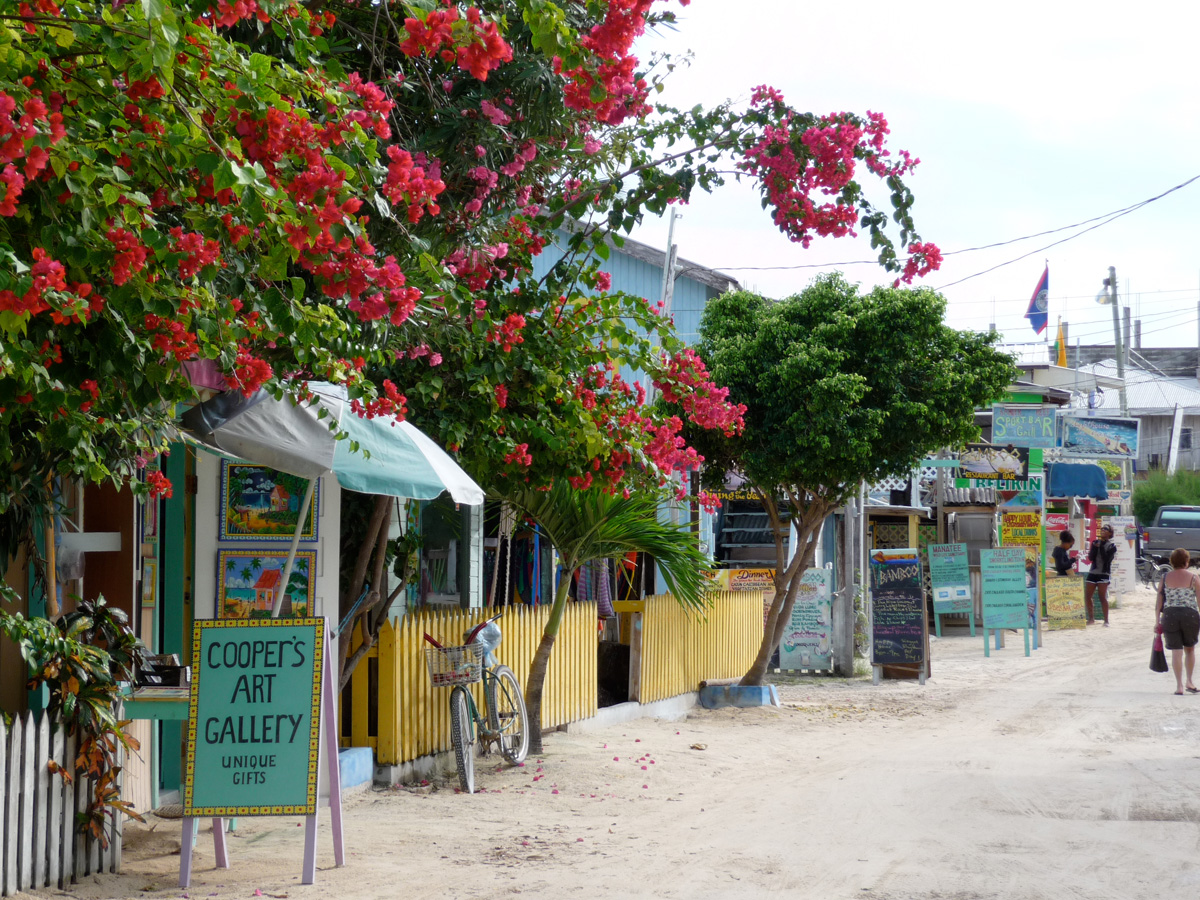 cooper's art gallery shop on white sand street in belize