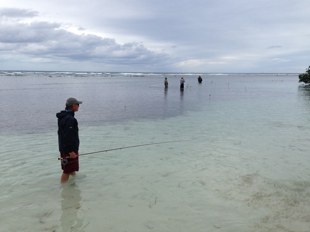 fly fishing in shallows near mangroves in belize
