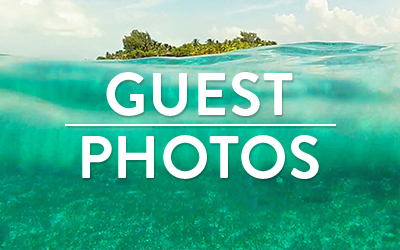 guest photo gallery snorkeling near remote island in belize