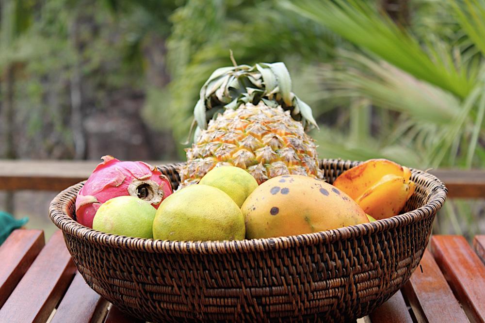 local fruit basket in jungle belize