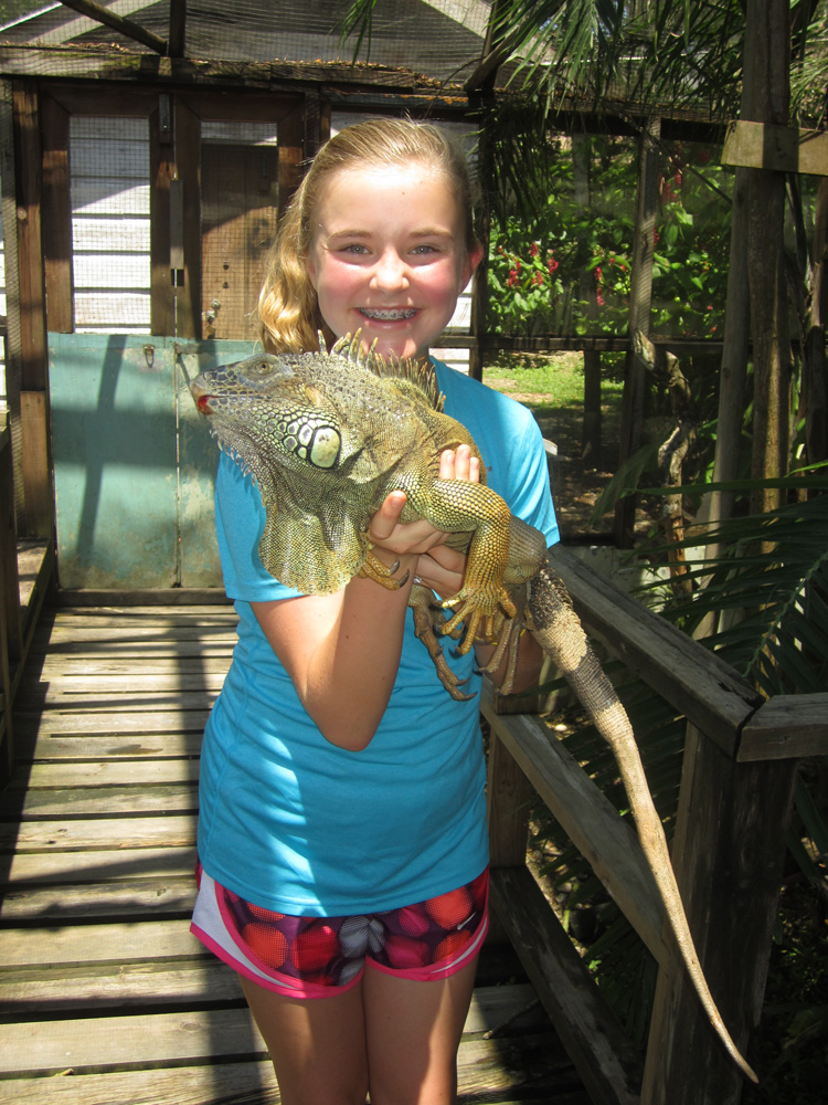 young girl hold huge iguana while on family vacation in belize