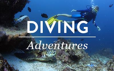 menu-diving